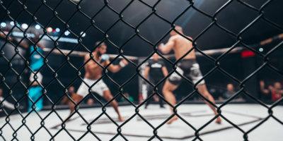 MMA - Mixed Martial Arts Viersen